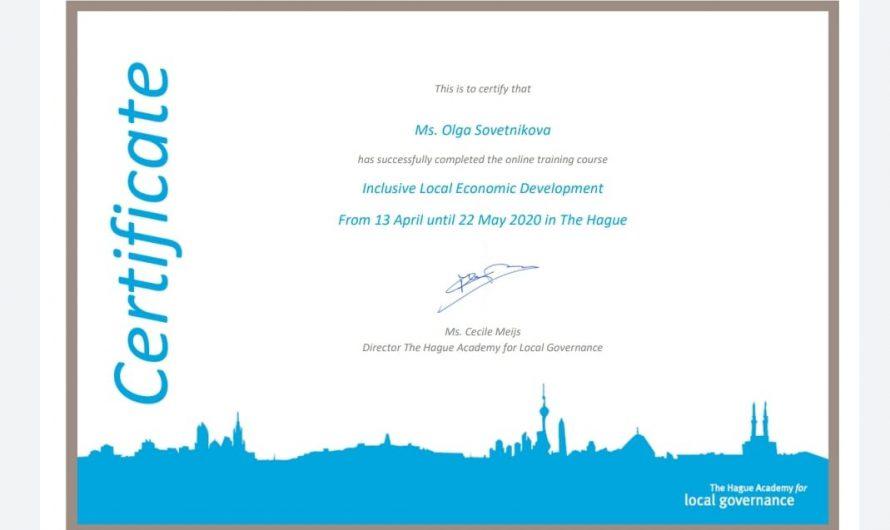 Обучение на онлайн-курсе Гаагской Академии местного самоуправления (Нидерланды)